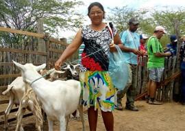 procase com caprinovinocultura no semiárido paraibano 4 270x191 - Procase incentiva a caprinovinocultura em comunidades do semiárido paraibano