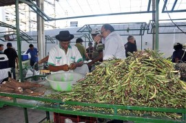 DSC 0749 270x179 - Emater antecipa funcionamento da Feira do Produtor Rural na Semana Santa
