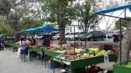 FEIRA 14 03 270x151 - Governo instala mais uma feira de agricultor familiar em Campina Grande