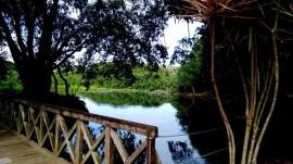 jb1 270x151 - Jardim Botânico fecha e fiscalização da Sudema atua no feriadão de Páscoa