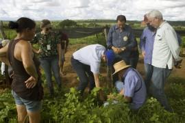 quixudi Soledade 2 270x180 - Representantes do IICA no Brasil e Programa Semear Internacional conhecem ações do Procase