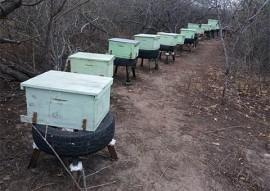 14_05_18 parcerias projeto de apicultura familiar (1)