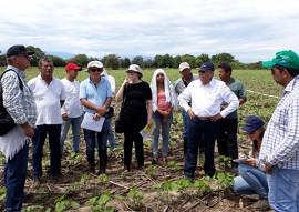 emater metodologia de ATER projeto algodao paraiba na bolivia (3)