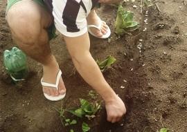 FUNDAC_  escola cidadaa socioeducativa desenvolve ervas mediciais_foto Fundac (3)
