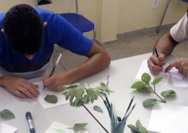 FUNDAC_  escola cidadaa socioeducativa desenvolve ervas mediciais_foto Fundac (8)