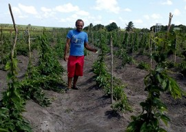 governo e emater atendem famílias ribeirinhas de riotTinto 3 270x191 - Famílias ribeirinhas de Rio Tinto recebem apoio do Governo e mudam padrão de vida