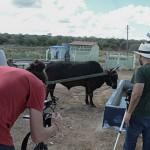 cinegrafista-DF-filma-projeto-agua-doce-pb_foto-walter-rafael-(7)portal