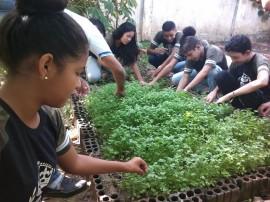 Escola Estadual de Ensino Fundamental Calula Leite Conceição 11 270x202 - Hortas enriquecem aprendizado e promovem alimentação saudável nas escolas estaduais da Paraíba