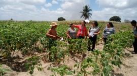 San 270x151 - Governo promove evento sobre quintais produtivos em comunidade indígena