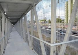 govrnador ricardo constroi passarela da br 230_foto walter rafael (2)