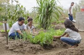 see horta escolar aumenta o aprendizado e enriquece a alimentacao dos alunos foto Diego Nobrega 11 270x178 - Hortas enriquecem aprendizado e promovem alimentação saudável nas escolas estaduais da Paraíba