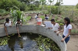 see horta escolar aumenta o aprendizado e enriquece a alimentacao dos alunos foto Diego Nobrega 2 270x178 - Hortas enriquecem aprendizado e promovem alimentação saudável nas escolas estaduais da Paraíba