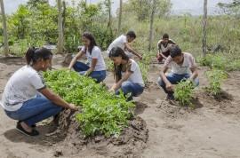 see horta escolar aumenta o aprendizado e enriquece a alimentacao dos alunos foto Diego Nobrega 3 270x178 - Hortas enriquecem aprendizado e promovem alimentação saudável nas escolas estaduais da Paraíba