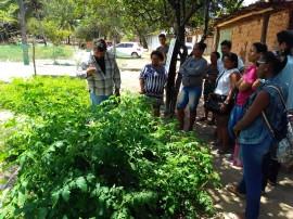 011 270x202 - Emater conclui mês de eventos dedicados à segurança alimentar