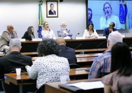 sedh Audiencia Publica em brasilia sobre o Trafico e Desaparecimento de Pessoas (1)